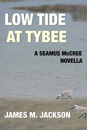 Low Tide at Tybee Cover