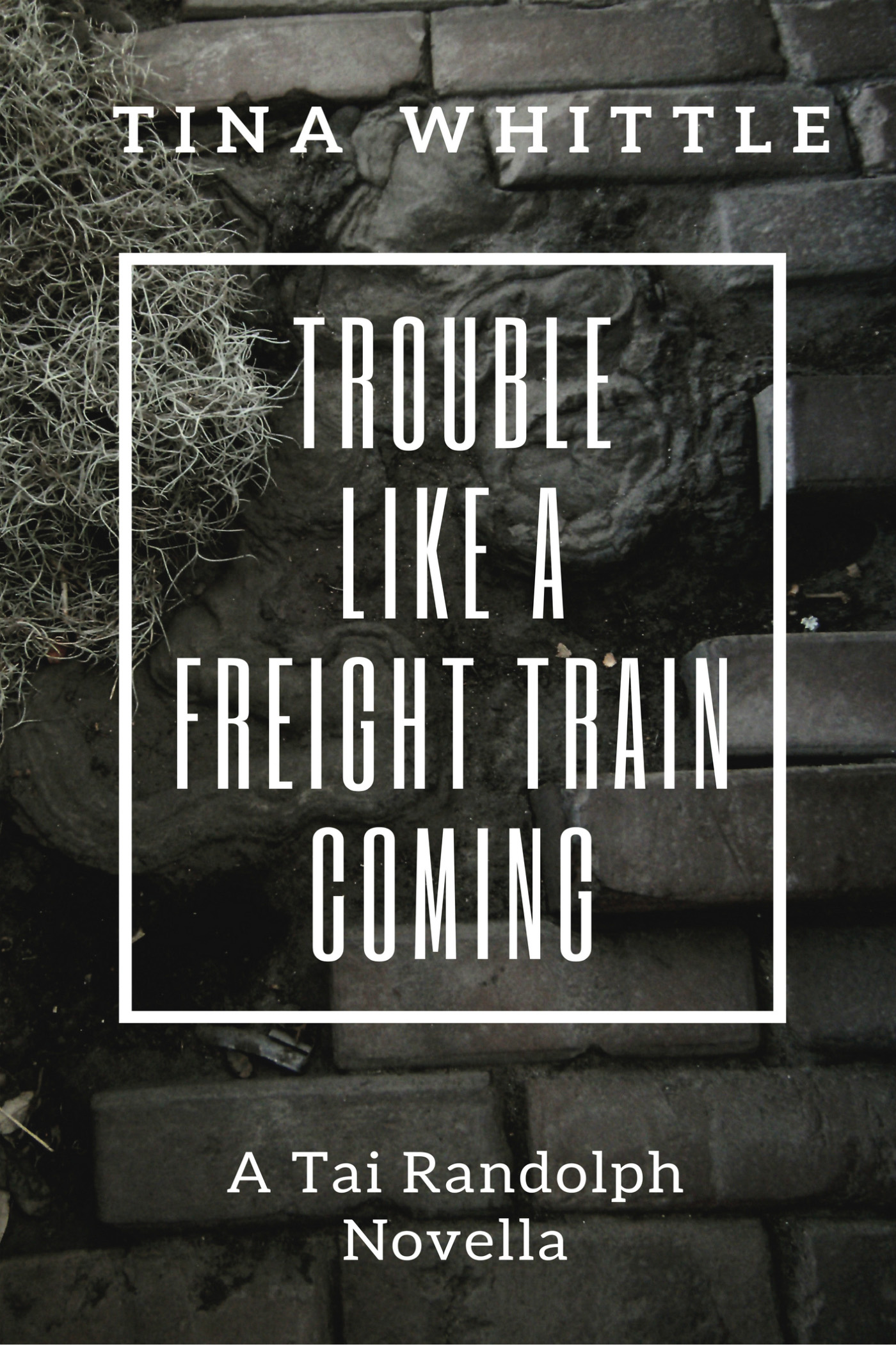 Trouble Like a Freight Train Coming Cover